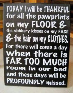Barrington Oaks Veterinary Hospital- http://bovh.com/: Animals, Dogs, Quotes, Pets, Furbabies, Be Thankful, So True, Fur Babies, Baby