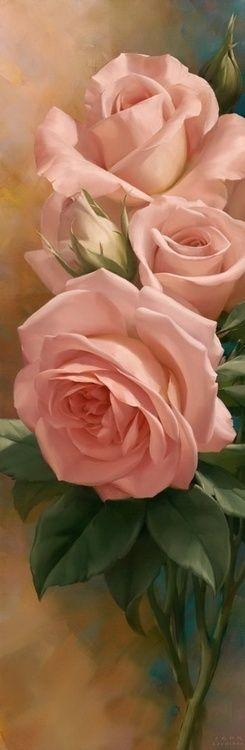 Confidence... thrives on honesty, on honor, on the sacredness of obligations, on faithful protection and on unselfish performance. Without them it cannot live. Franklin D. Roosevelt ... something we never want to lose in others.: Pink Roses, Beautiful Ros