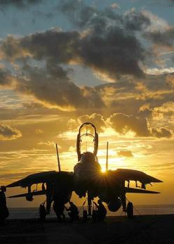 Jet: Military Aircraft, Airplanes, Top Gun, Gun F 14, F14 Tomcat, Tomcat F14, F 14 Tomcat, Fighter Jets