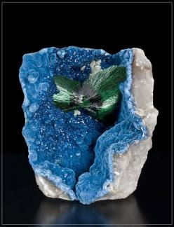 Malachite with Shattuckite and Quartz - Namibia: Crystals Gemstones Fossils, Minerals Gemstones Crystals, Gemstones Crystals Etc, Colorful Gemstones, Gemstones Crystals Stones, Gems Gemstones Minerals, Gemstones Rocks Stones, Stones Gems Minerals Crystals