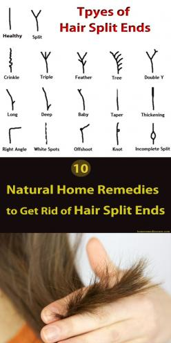 Often, Girls who have long hair have the problem of hair split ends.  So try these easy home remedies at home to solve your split ends problems. I am sure the regular uses of these home made remedies will definitely help you.: Long Hair Style, Split End,