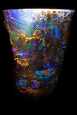 Opal in Ironstone, Queensland, Australia. Photomicrography by Danny J. Sanchez: Gemstones Photography, Crystal Rocks Gemstones, Mineral, Gemstones Crystals, Queensland Australia, Opals