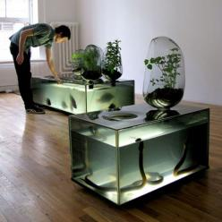 River Plant Aquarium by Mathieu Lehanneur - This version of hydroponics uses a refrigerated aquarium as a hatchery for freshwater fish, while vegetables grow on top in glass pods. The vegetables use the water from the fish tank, extract nutrients, filteri