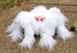 Tarentule albinos, white furry Tarantula.   ETA: Not a real spider but a plush fabric sculpture.  Sorry about that, but it is cute.: Albino Animals, Albino Tarantula, Tarentule Albino, Albino Hairy, Stuffed Toy, Real Spider, Hairy Tarantula
