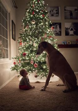 The Cutest Thing You'll See Today: 22 Kids and Their Big Dogs. Omg this is amazing! #puppies: Picture, Holiday, Animals, Dogs, Baby, Photo, Kid
