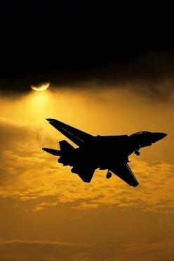 The Golden Hour  #military aviation: Silhouette, Awesome Airplanes, Sunset, Aircraft, F14 Tomcat, F 14 Tomcat, Military Airplanes, Fighter Jets
