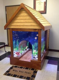Can I have one, but bigger? Our dog is huge... ... ... ... Okay, it's for me. But can you blame me? It's awesome!: Cat, Dogs, Doghouses, Fish Tanks, Pet, Aquarium, Dog Houses, Fishtank, Animal