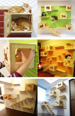 Catswall.  Catswall is a modular aluminum wall hanger system. DIY assembly.  The grid system of Catswall allows you to add different extensions to it, the Catsbox, Catspassage, Catsladder, and Catstair.: Cat Ideas, Modular Cat, Pet Stuff, Cat Wall, Cats W