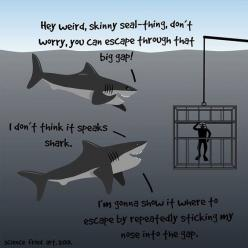 I've been in one of these and suddenly I can't stop laughing. Lmao.: Giggle, Funny Stuff, Nice Guys, Things, Sharkweek, Shark Week, Animal, Misunderstood Sharks