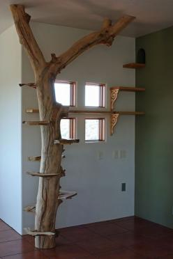 I want to do this one day for my cat.: Cat Walkway, Cats, Cat Enclosure, Cat Trees, Cat House, Cat Room