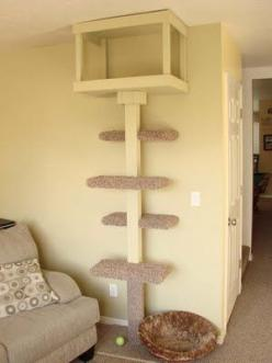 My attempt to keep the cats off the furniture, with a small footprint.: Scatty Cat, Diy Cat Tower, Cat Condo, Pet, Cat Trees, Cat Stuff, Diy Cat Tree, Diy Cat Perch