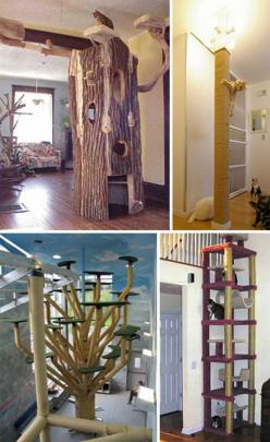These are great cat scratching posts! I absolutely love the tree stump!: Cats, Awesome Pet, Pet Habitat, Pets, Dog Houses, Cat Trees, 25 Awesome