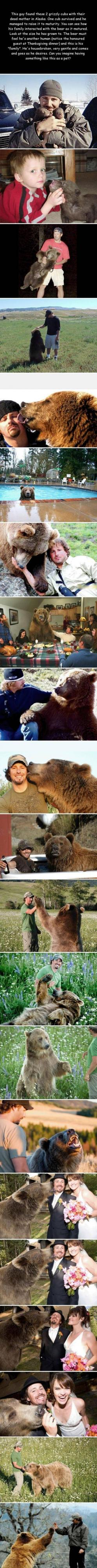 this dude has a freaking grizzly as his pet.: Humanity Restored, Sweet, Adorable Animals, Guy, Wild Animals, Pet Bear, Grizzly Bears