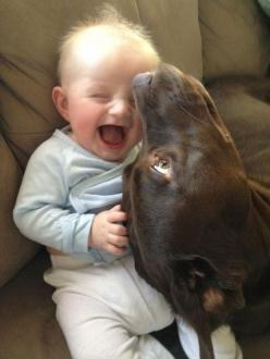 A goofy dog successfully entertaining a baby: | 30 Animal Pictures That Will Make You A Better Person: Babies, Animals, Dogs, Best Friends, Pitbull, Pet, Pit Bull, Smile, Kid