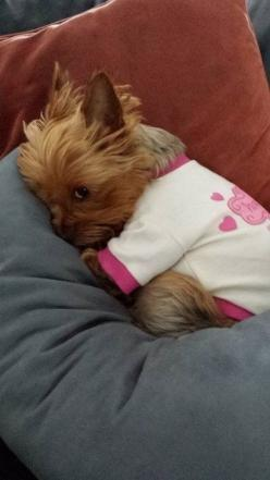 """This is my sleepsuit. I'm just, like, getting prepped."" 