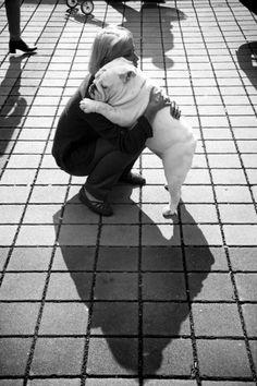 bulldog http://media-cache3.pinterest.com/upload/174796029256827026_8OXwAfiQ_f.jpg jaimecass amour