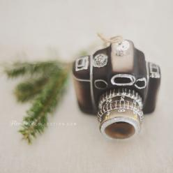 Camera Ornament + Florabella Actions Giveaway!  https://www.facebook.com/photo.php?fbid=10151855834901662&set=a.374377016661.154136.168699921661&type=1&permPage=1