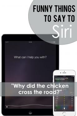 Funny things to say to Siri. For some fun entertainment!: Funny Quotes And Sayings Humor, Funny Quotes Hilarious, Funny Things, Fun Entertainment, Funny Saying, Funny Test, Funny Stuff, Awesome Funny Quotes, Funny Laugh Quotes