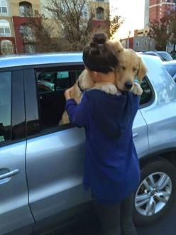 8 Signs That Your Dog Actually Loves You: Picture, Saying Goodbye, Animals, Dogs, Puppy Hug, Golden Retrievers, Pets, Friend