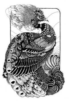The 19th-century artist Aubrey Beardsley inspired Peacock by Iain Macarthur - Obsessed with anything peacock related at the moment.: Peacocks, Iainmacarthur, Illustration, Iain Macarthur, Zentangle, Tattoo, Design, Drawing