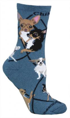 Chihuahuas Socks: Club Chihuahuas, Dogs Fits, Animal Socks, Beautiful Chihuahuas, Chihuahuas Mi, Chihuahuas Socks, Chiuihauia Socks Super, Dog Chihuahuas