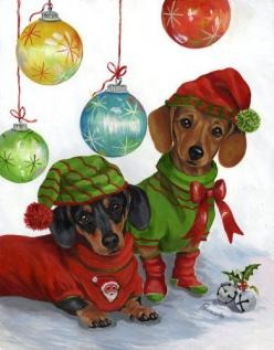 How did they get those dogs to leave those clothes on?: Christmas Cards, Holiday, Dogs, Dachshund Christmas, Doxies, Dachshund Jingle, Christmas Doxie, Merry Christmas