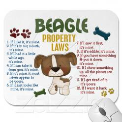 If only I had done some real research before adopting my beagle 8 years ago. This is exactly her.: Property Laws, Dogs, Beagle Property, Pets, Beagles, Mousepad, So True, Animal