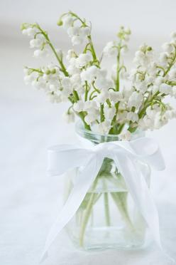 Lilies of the valley are my absolute favorite flowers. I love how they smell and how they look. Such a delicate sweet-smelling addition to any bouquet!: Favorite Flowers, White Flowers, Lily, Wedding Ideas, Lilies, Valley, Garden, Floral