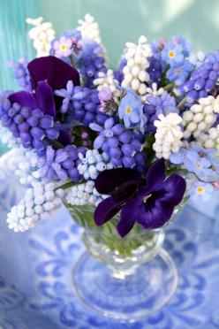Muscari  & Pansies with a few forget-me-nots ...Perfect For Country Dining.: Grape Hyacinth, Purple, Color, Blue, Flower Arrangements, Floral Arrangement, Flowers, Garden