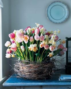 Tulips and Daffodils in a Nest.  This would make the perfect Easter centerpiece. #MSL: Centerpiece, Ideas, Spring Flowers, Easter, Tulip, Flower Arrangements, Floral Arrangements, Garden
