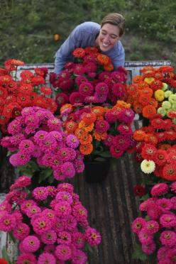 """Zinnias. Johnny's Select Seed. Sun annuals. Cut flowers. Pinch back center flowers at 18"""" tall to encourage low branching & longer stems.: Annual Flower Garden, Cutting Garden, Cut Flower Garden, Cut Flowers, Floret Flowers, Flower Farm"""