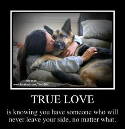 True love is knowing that someone is there forever even through the good, the bad, and the ugly. #GSD