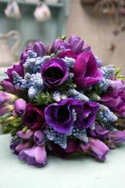 Anemones, muscari, tulips by Green & Gorgeous: Muscari Tulips, Anemones Muscari, Green Gorgeous, Lavender Wedding, Garden, Photo