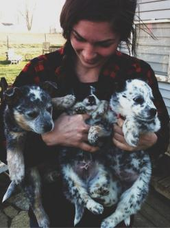 girls who love dogs - specifically, blue heelers in this girls case.: Heeler Puppies, Blue Heelers, Australian Cattle Dog, Puppys, Baby, Cattle Dogs, Animal