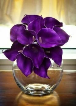 Gorgeous Dark Purple Lilies: Real Touch, Touch Calla, Calla Lily Bouquet, Purple Passion, Things Purple, Purple Real, Purple Calla Lilies, Flower