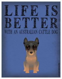 Life Is Better With An Australian Cattle Dog: Australian Cattle Dogs, Heeler Dogs, Adore Dogs, Blue Heeler, Dogs Heelers, 3Dogs Agoat, Red Heeler