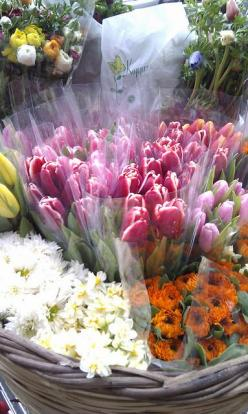 You Don't Send Me Flowers Anymore: Colour Therapy, Color, Flower Shoppe, Beautiful Flowers, Bloom, Photo, Flower Market, Florist Shops Flower