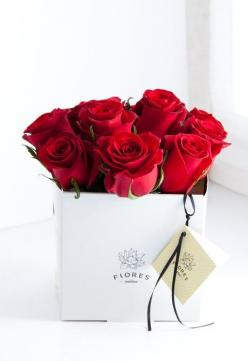 ZsaZsa Bellagio – Like No Other: Très Chic: RED: Roses Are Red, Valentines, Red Roses, Bloom, Flowers, Beautiful Rose, Valentine S, Floral