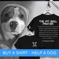 """""""The Pit Bull Prayer"""" Buy A Shirt - Help A Dog  Tag a Pit Bull Owner & Reserve yours now...  Go here: http://Euphorictees.com/help-a-pit:"""