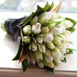 bouquet of white tulips: Bridal Bouquets, Black White Weddings, B White Green, Tulips Favoriteflower, White Tulips, Tulip Bouquet, Flowers Tulips Roses