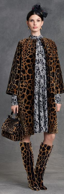 Dolce & Gabbana Women's Clothing Collection Winter 2016: Dolce Gabbana, Winter 2016, Gabbana Winter, Dolce & Gabbana, Dolce And Gabbana 2016, Dolce Gabbana