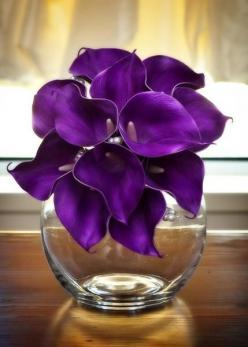 Purple Real Touch Calla Lily Bouquet by How Divine https://www.howdivine.com.au/store/product/purple-real-touch-calla-lily-bouquet: Real Touch, Touch Calla, Purple Passion, Calla Lily Bouquet, Things Purple, Purple Real, Purple Calla Lilies, Flower