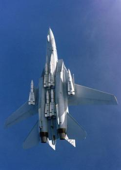 f-14 tomcat with all six phoenix missiles showing. key fleet defense. six targets at one time.