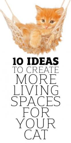 10 Ideas To Creating More Living Spaces For Your Cat: Crochet Cat Toy, Diy Cat Toy, Cat Living Space, Pet Idea, 10 Ideas