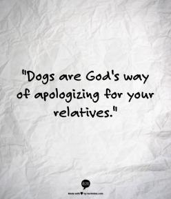 Dogs are Gods way of apologizing for your relatives.: Dogs Quotes, God S, Apology Accepted, Dog Quotes, Family Quotes Funny, Fur Babies, Dog S, Holidays Funny Quotes, Funny God Quotes