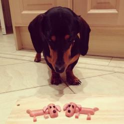Hot dogs-Mom is this supposed to be funny???: Diggity Dogs, Hotdog, Dogs Mom, Funny Doxie, Dogs Johnny