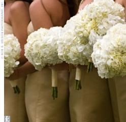 Hydrangea bouquets: Wedding Idea, Wedding Floral