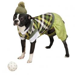 Putter Pup Costume: Halloween Costumes For Dogs, Pet Costume, Pup Costume, Doggie Costumes, Halloween Costume Ideas, Dog Halloween Costumes, Costumes Ideas, Golfer Costumes