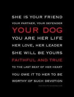 Rover 99 - *She Is Your Friend - dark | Poster: Pet, Furbabies, Dog Quotes, Baby, Friend Poster, Friend Dark, Dog Stuff, Dark Poster, Animal