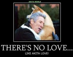 Akita Hachiko and Richard Gere  True story of  a dogs   devotion.  How you loved your Akitas...and, how they loved you, never leaving your bed xxx and your Bear and Lilly, too...